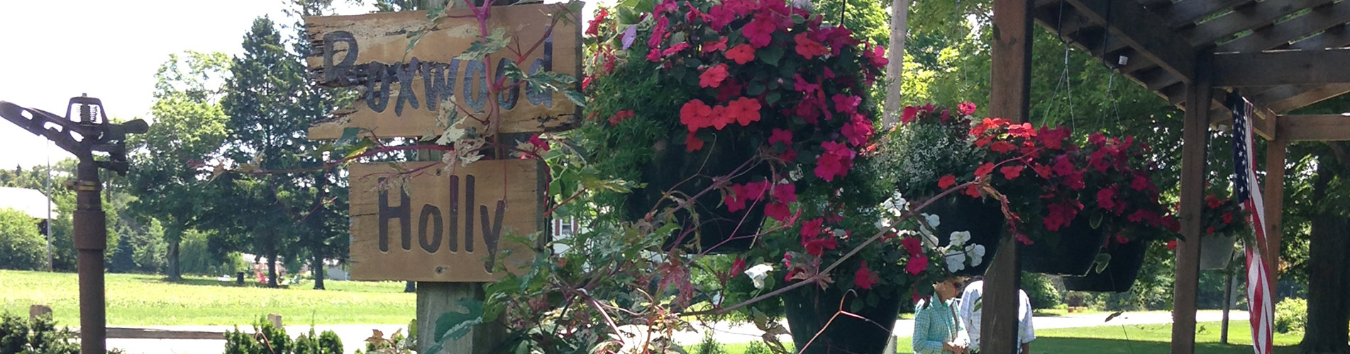 Nursery Grown Plants Services In Fennville Mi